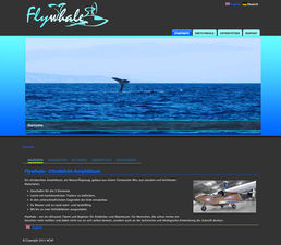 Flywhale Internetseite - Screenshot  1